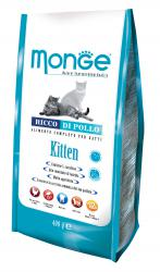 MONGE Cat Kitten